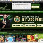 Prizes Springbok