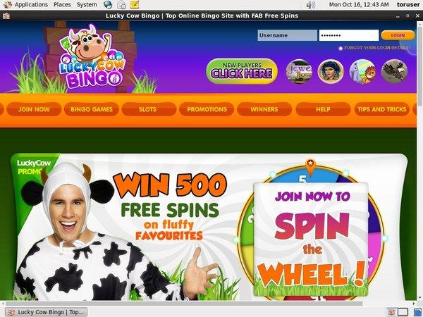 Lucky Cow Bingo Voucher Codes